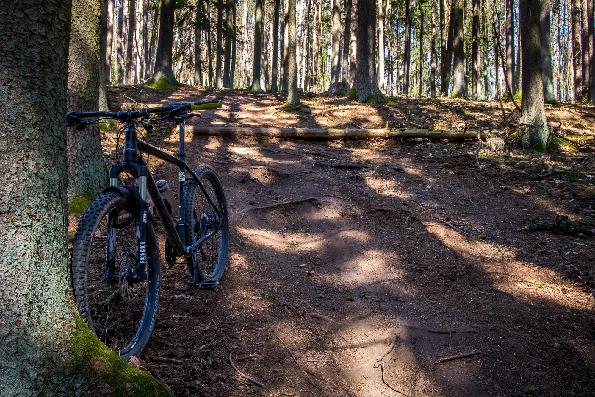 Hometrails cruisen auf'm Hinterholz 8, Wildsau Trail und im Thiergarten