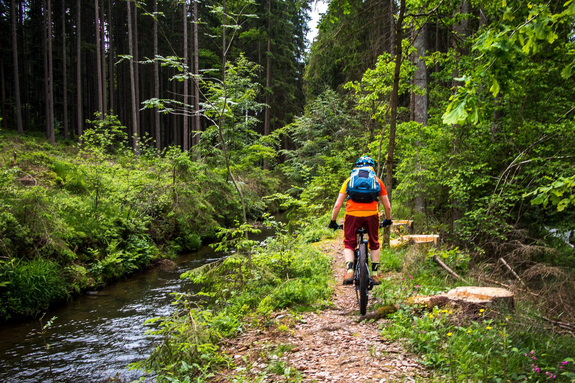 coole Runden im Bayerischen Wald bei Drachselsried